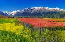 Steppe Adventures