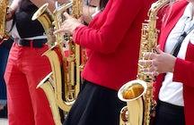 City Wind orchestra Petrinja