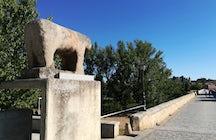 The stone bull of Salamanca