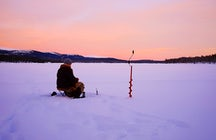 Ice fishing Riksgransen