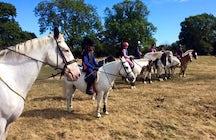 Drakes Farm Riding Centre
