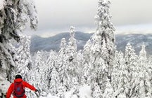 Pertouli Ski Center & Resort