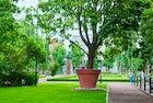 Sibelius Park, Kotka