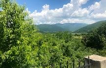 Leshani village