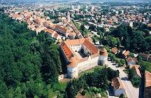 Brežice Castle