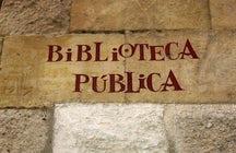 Biblioteca Pública de Salamanca, Casa de las Conchas
