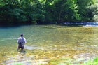 Fly-fishing experience on Una river