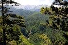 Perućica Rainforest, National Park Sutjeska