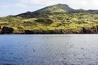 Landscape of the Pico Island Vineyard Culture