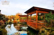 Tsirani Garden- restaurant