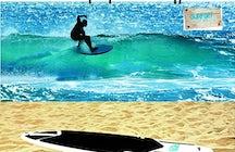 Surfgym