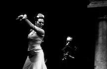 Flamenco on Fire - Festival