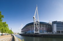 Support the Wales national rugby union team in the Millenium Stadium