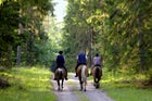 Horseaback riding in Mount Pelion, the four seasons destination