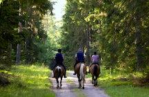 Horseaback riding in Mount Pelion, the four seasons destination