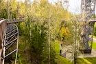 Anykščiai Treetop Walking Path