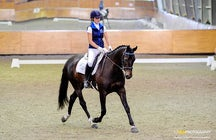 Right Start Equestrian Training