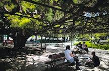 Jardim do Príncipe Real / Jardim França Borges