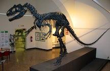 Natural Science Museum - Bergamo