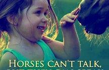 Corfu Horse Riding Club Anthi