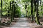 Skrylle Nature Reserve