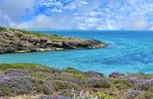 Spiaggia di Cala Mosche