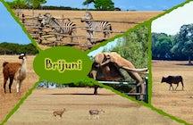 Brijuni Safari Park