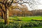 Saint James Park, in Westminster
