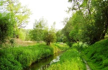 Brussels Green Walk, Woluwe Valley