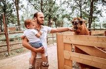Windmill Zoo Park Sălicea