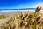 Haväng beach