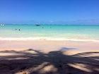 Ponta de Mangue (Alagoas)