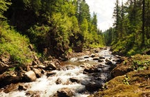 Osinovka river