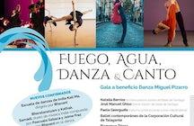 Centro cultural Miguel pizarro