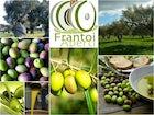Frantoi Aperti Festival
