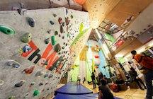 The Wall sport climbing center