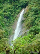 Tapanti National Park (Parque Nacional Tapantí)