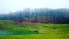 Hirkan National Park, Lenkoran