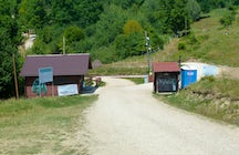 Libearty Bear Sanctuary, Zărneşti