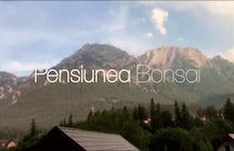 Pensiunea Bonsai