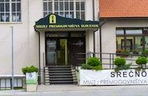 Coal mining museum of Slovenia
