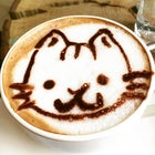 Café Neko