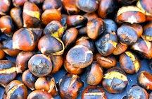 The Chestnut Festival of Soriano nel CImino