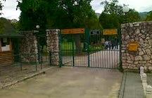 Pionirska Dolina Zoo