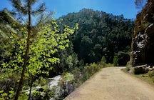 Río Borosa Walking Track