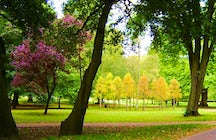 Bute Park, the green heart of Cardiff