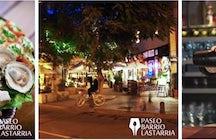 Paseo Barrio Lastarria
