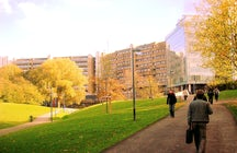 Vrije University of Brussels