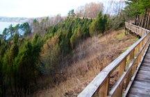 Juniper cognitive trail, Arlaviškės