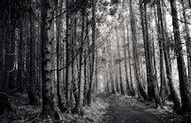 Mistérios Negros hiking trail